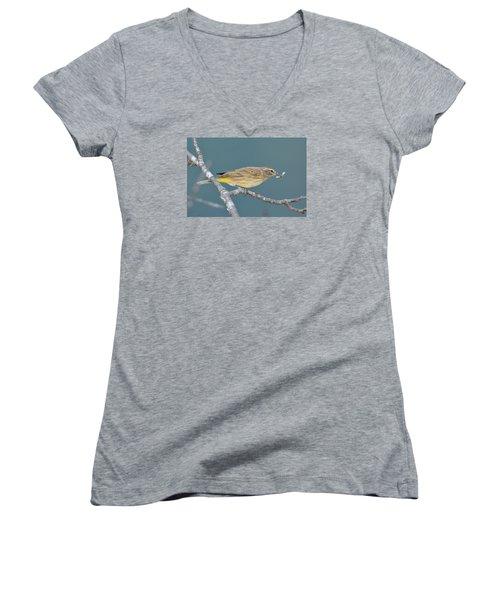 Palm Warbler Lunch Women's V-Neck T-Shirt (Junior Cut) by Alan Lenk