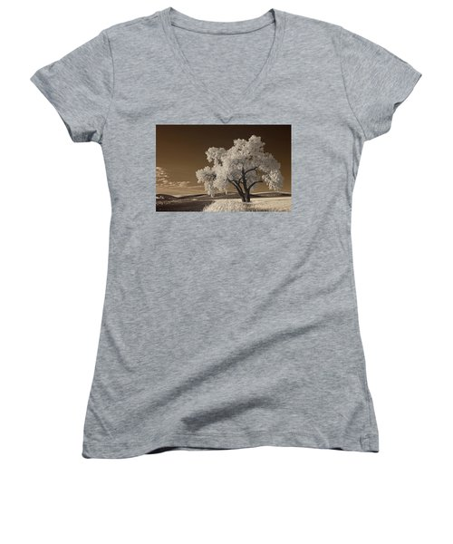 Palouse Women's V-Neck