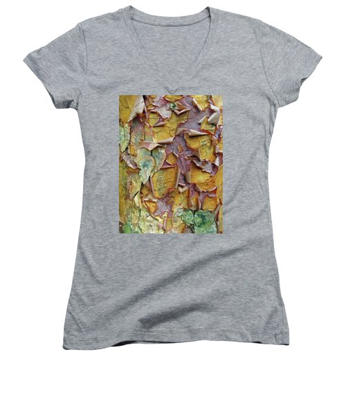 Paperbark Maple Tree Women's V-Neck