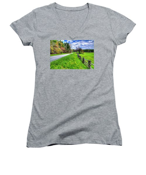 Parkway Spring Women's V-Neck T-Shirt