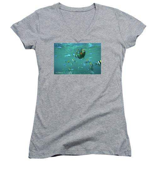 Parrot Fish Women's V-Neck T-Shirt (Junior Cut) by Tim Fitzharris