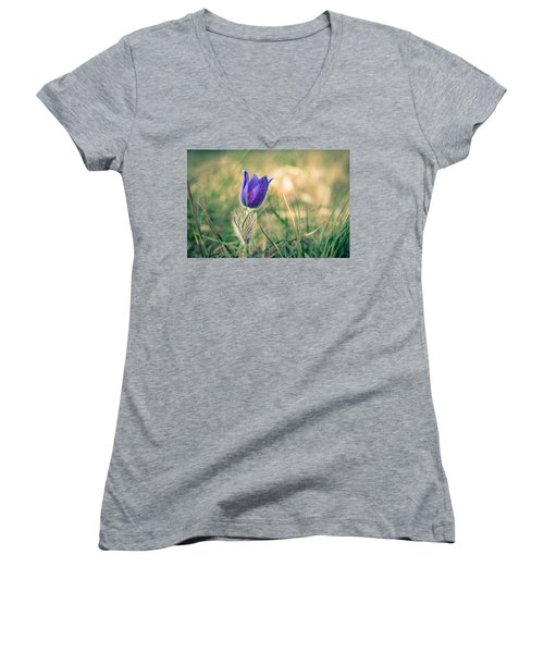 Pasque Flower Women's V-Neck T-Shirt (Junior Cut) by Andreas Levi