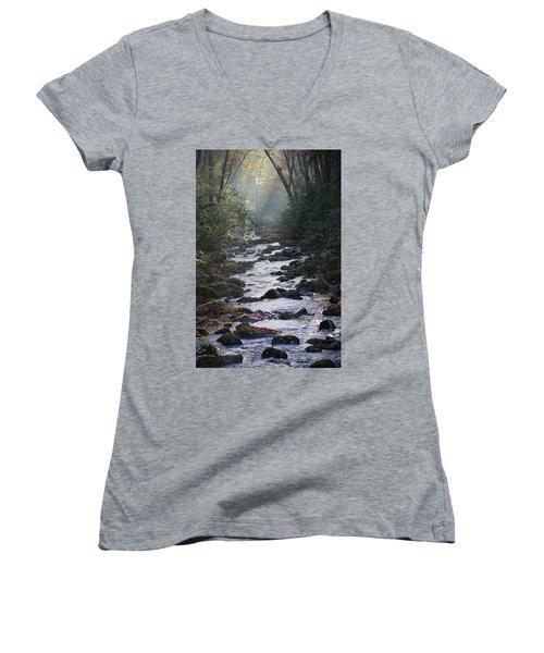 Passage Of Time Women's V-Neck T-Shirt (Junior Cut) by Lamarre Labadie
