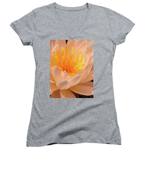 Pastel Pleasures  Women's V-Neck T-Shirt