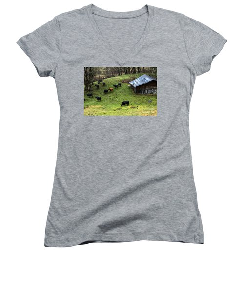 Pasture Field And Cattle Women's V-Neck T-Shirt (Junior Cut) by Thomas R Fletcher