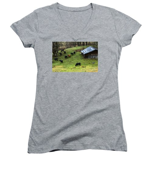 Pasture Field And Cattle Women's V-Neck