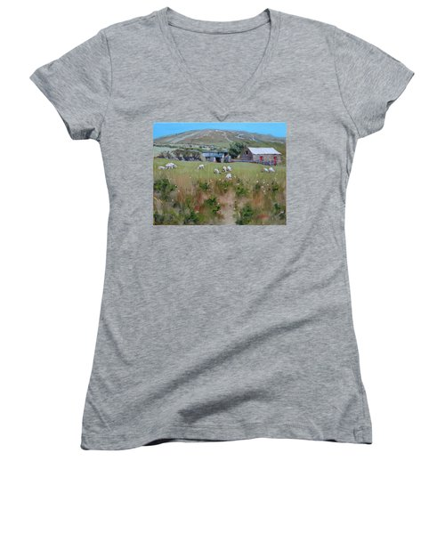 Pastures Of Ireland Women's V-Neck (Athletic Fit)