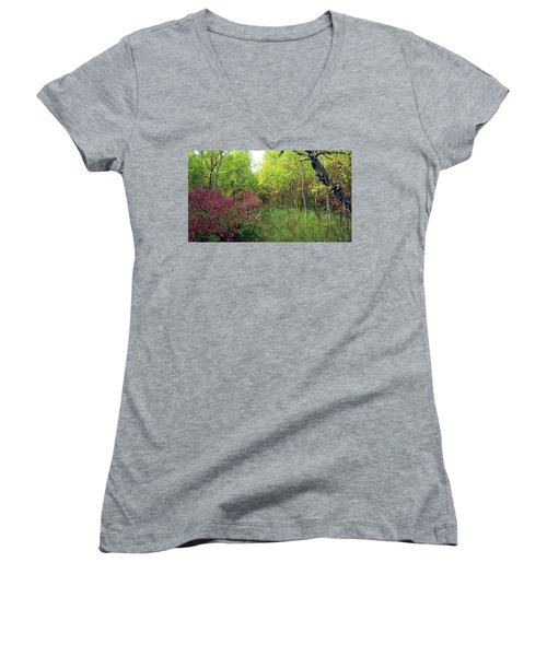 Path In The Woods 8 Women's V-Neck