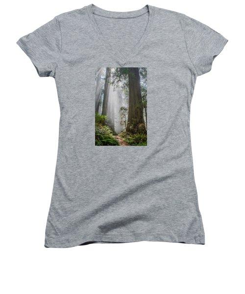 Path Through The Light Women's V-Neck T-Shirt