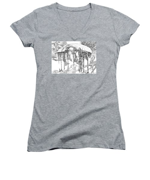 Pavilion Women's V-Neck T-Shirt (Junior Cut) by Charles Cater
