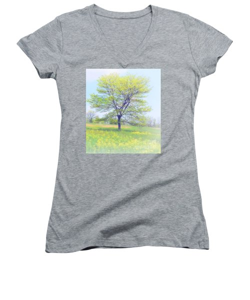 Peace On The Hillside Women's V-Neck (Athletic Fit)