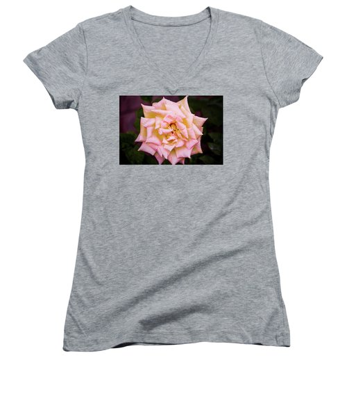 Peace Rose Women's V-Neck T-Shirt (Junior Cut) by Donna G Smith