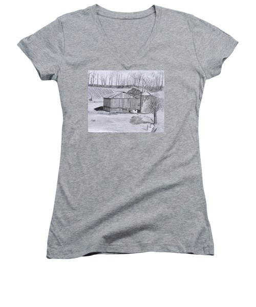 Peaceful Setting  Women's V-Neck (Athletic Fit)