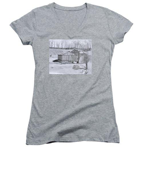 Peaceful Setting  Women's V-Neck T-Shirt