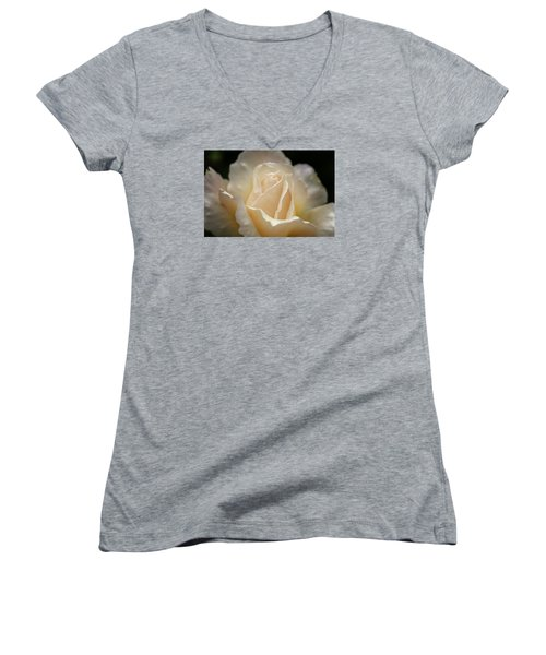 Peach Rose Women's V-Neck T-Shirt (Junior Cut) by Mary Angelini