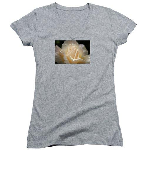 Peach Rose Women's V-Neck T-Shirt