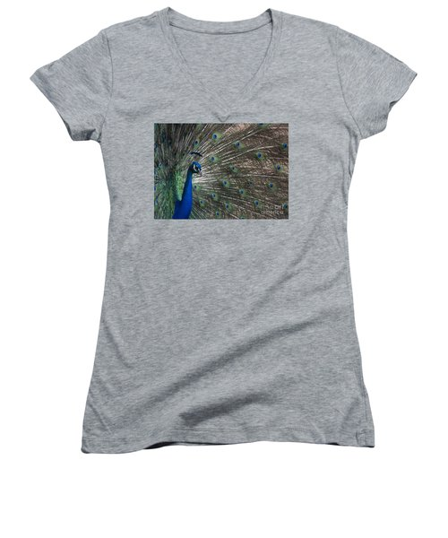 Women's V-Neck T-Shirt (Junior Cut) featuring the photograph Peacock II by Lisa L Silva