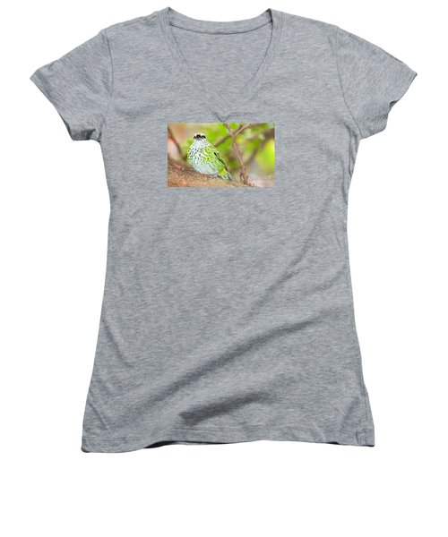 Women's V-Neck T-Shirt (Junior Cut) featuring the photograph Peep by Judy Kay