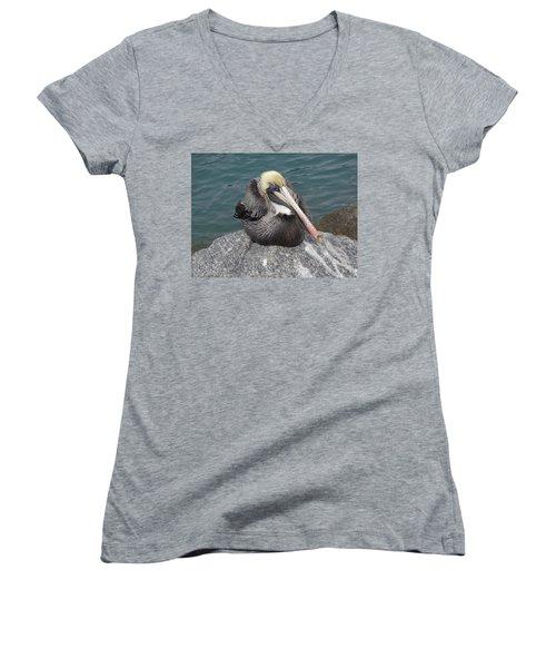 Pelican Women's V-Neck T-Shirt (Junior Cut) by John Mathews