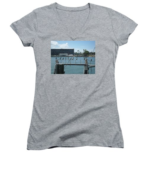 Pelicans In A Row Women's V-Neck T-Shirt (Junior Cut) by Val Oconnor