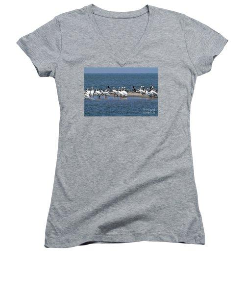 Pelicans Island Women's V-Neck T-Shirt (Junior Cut) by Cindy Croal