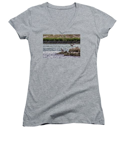 Pelicans  Women's V-Neck T-Shirt (Junior Cut) by Nance Larson