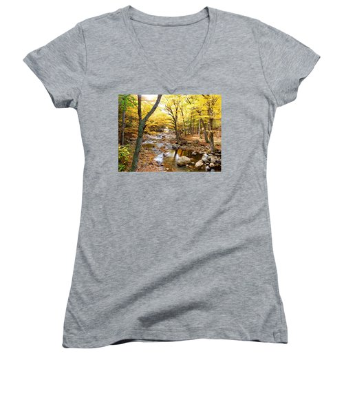 Pemigwasett River At The Flume Women's V-Neck T-Shirt (Junior Cut) by Catherine Gagne
