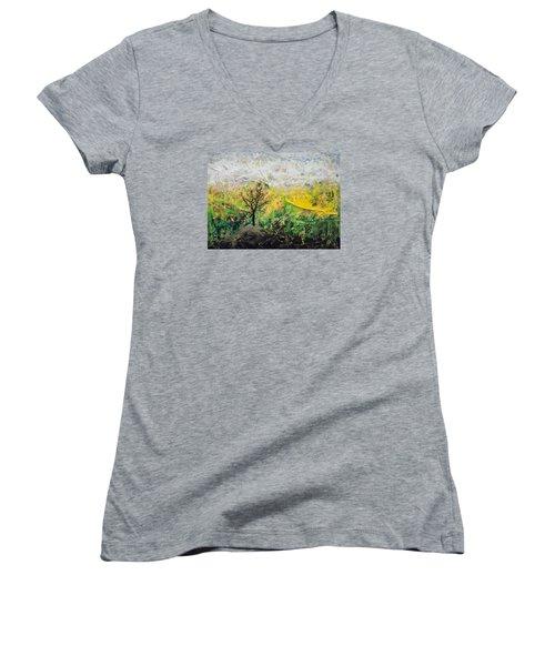 Peneplain Women's V-Neck T-Shirt