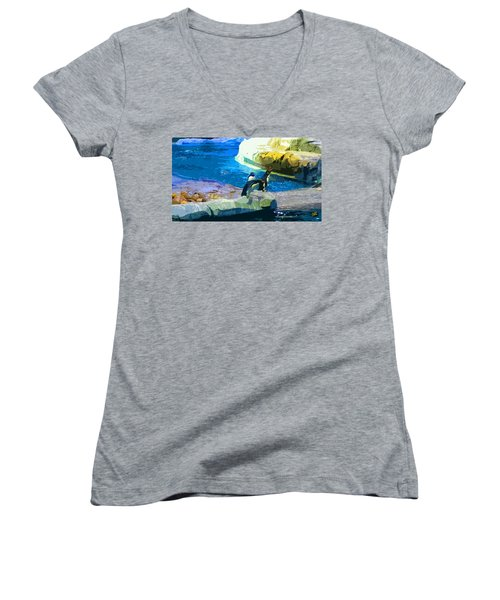 Penguins At The Zoo Women's V-Neck T-Shirt