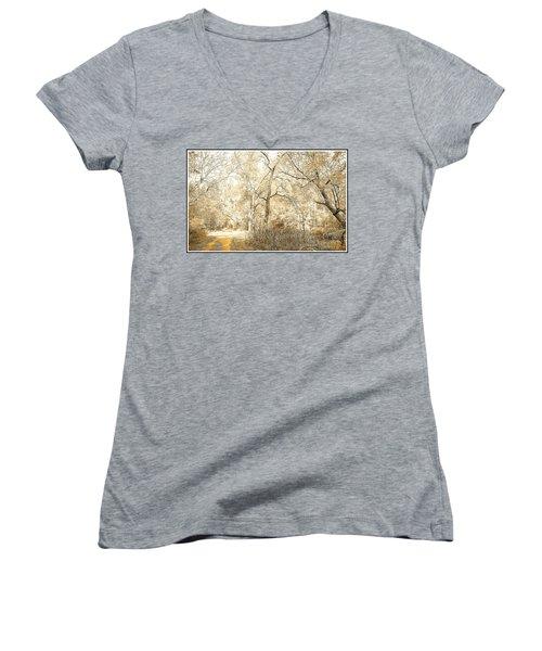 Pennsylvania Autumn Woods Women's V-Neck T-Shirt (Junior Cut) by A Gurmankin