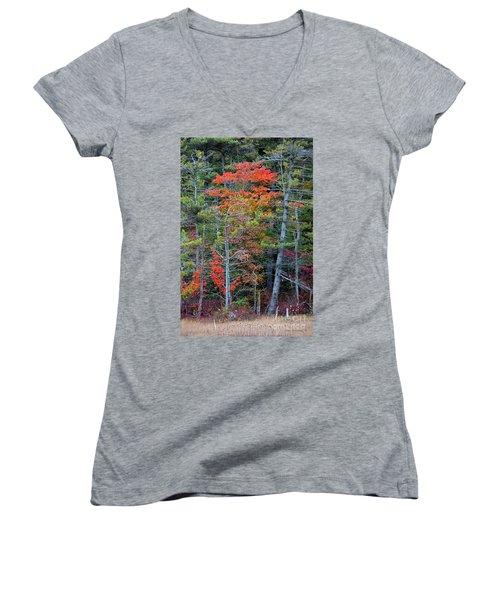 Pennsylvania Laurel Highlands Autumn Women's V-Neck T-Shirt (Junior Cut) by John Stephens