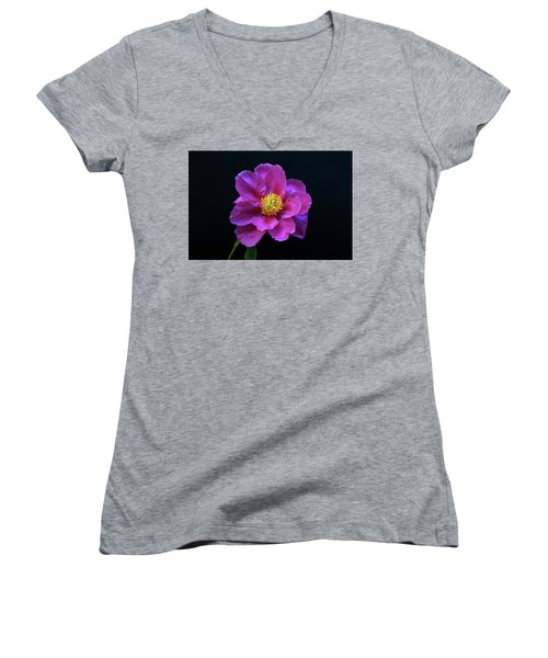 Peony - Beautiful Flowers And Decorative Foliage On The Right Is One Of The First Places Among The G Women's V-Neck T-Shirt