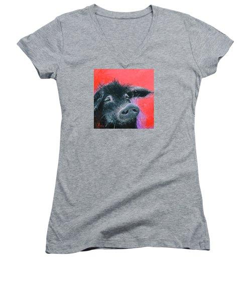 Percival The Black Pig Women's V-Neck T-Shirt (Junior Cut) by Jan Matson