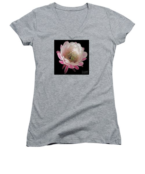 Perfect Pink And White Cactus Flower Women's V-Neck T-Shirt (Junior Cut) by Merton Allen