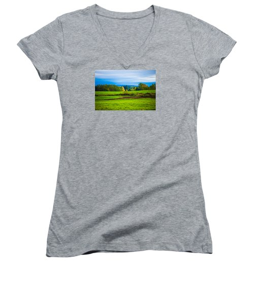 Perfect Place For A Meadow Women's V-Neck (Athletic Fit)