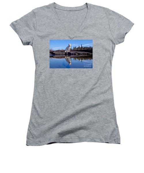 Perfect Reflections Women's V-Neck T-Shirt (Junior Cut) by Sandra Updyke