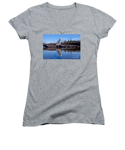 Perfect Reflections Women's V-Neck T-Shirt