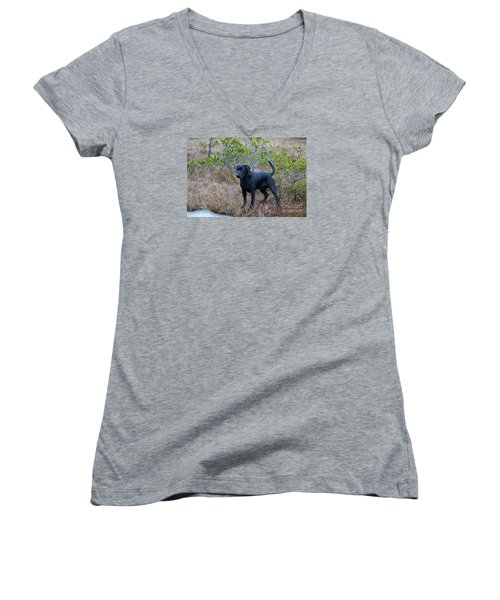 Pet Portrait - Radar Women's V-Neck T-Shirt (Junior Cut)