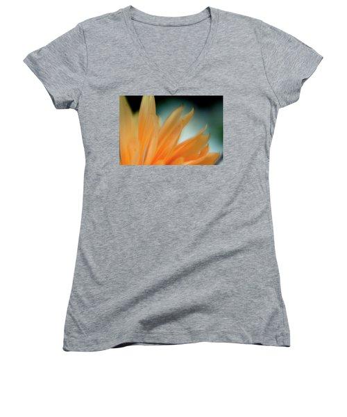 Petal Disaray Women's V-Neck T-Shirt (Junior Cut) by Greg Nyquist