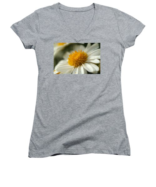 Petals And Pollen Women's V-Neck T-Shirt