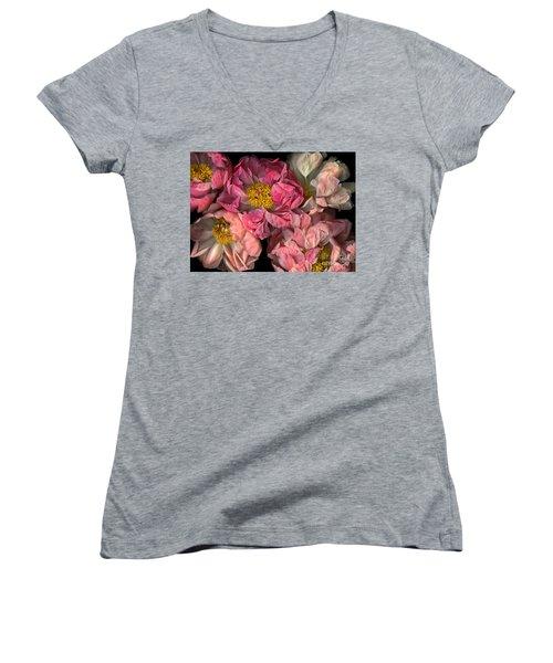 Petticoats Women's V-Neck T-Shirt (Junior Cut) by Christian Slanec