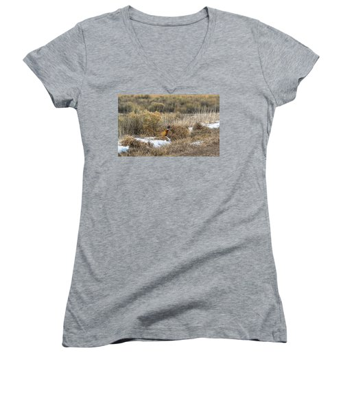 Women's V-Neck T-Shirt (Junior Cut) featuring the photograph Pheasant Glory by Yeates Photography