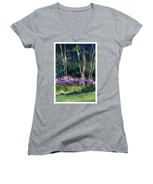 Phlox Meadow, Harrington State Park Women's V-Neck