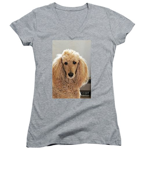 Women's V-Neck T-Shirt (Junior Cut) featuring the photograph Phoebe by Michele Penner