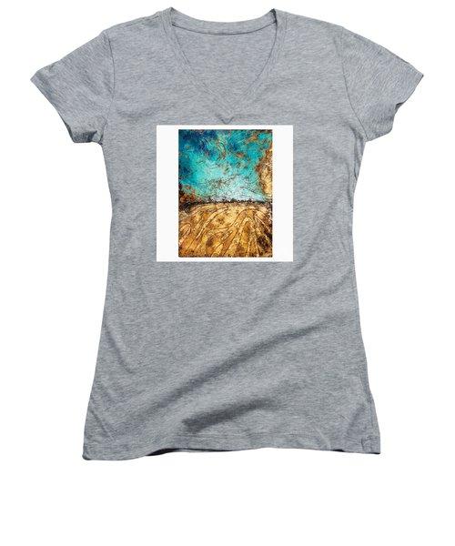 Phoenix  Women's V-Neck T-Shirt
