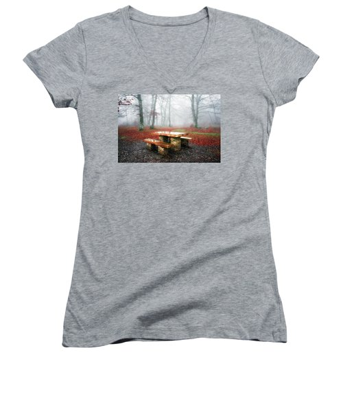 Picnic Of Fog Women's V-Neck