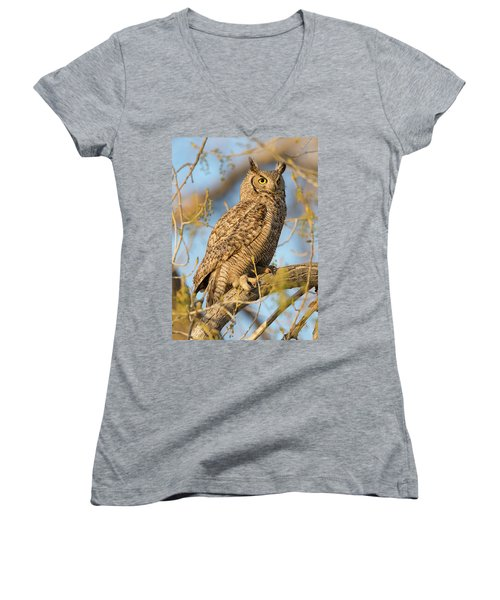 Picturesque Women's V-Neck T-Shirt (Junior Cut) by Scott Warner