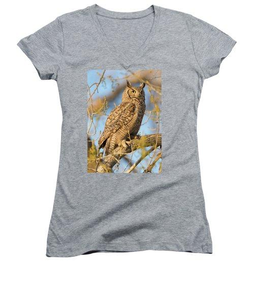Picturesque Women's V-Neck T-Shirt