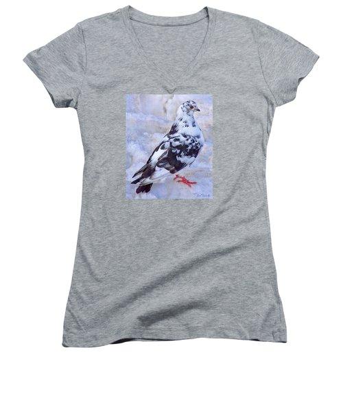Pigeon On Ice  1 Women's V-Neck T-Shirt (Junior Cut) by John Selmer Sr