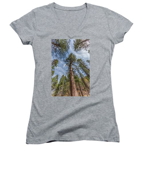 Pine Cathedral On The West Fork Women's V-Neck
